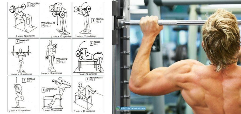 ejercicios ganar masa muscular